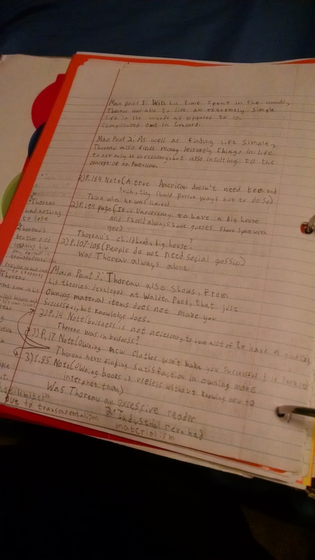 Help critisizing my essay.?